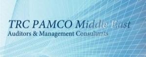 Auditors, Accountants, & Management Consultants